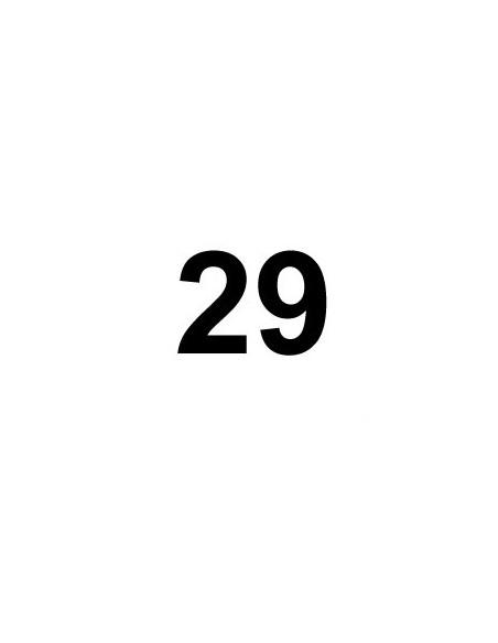 Cámaras 29